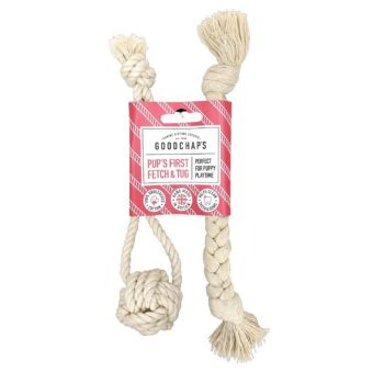 Fetch and Tug Toy for Puppies or Smaller Dogs